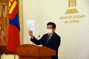 'Amendment to the Constitution of Mongolia enables stability of government'