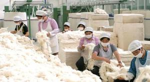Agricultural Stock Exchange trades cashmere for over 36 billion MNT