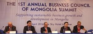 BCM summit addresses business sector development